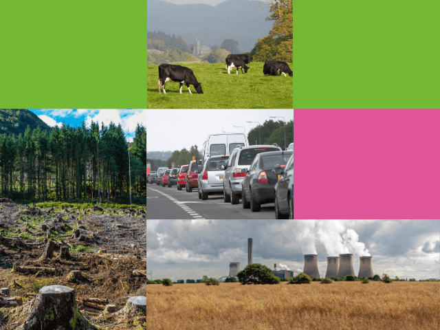Cows in a field, felling of trees, traffic pollution, power station producing gasses